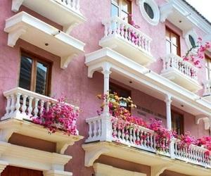 pink, travel, and cartagena image