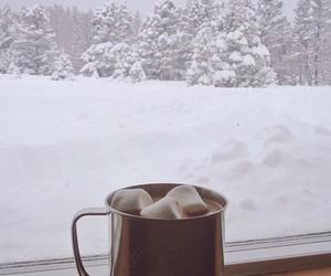 christmas tree, coffee, and drink image