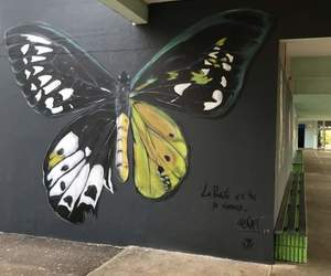 borboleta, butterfly, and street art image