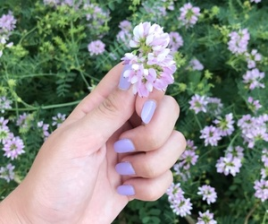 acrylic, flowers, and nails image