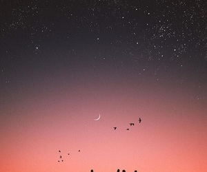 photography, sky, and stars. image