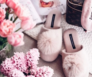 Louis Vuitton and slippers image