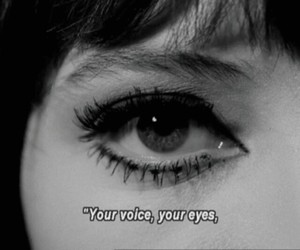 eyes, black and white, and voice image