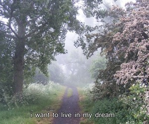 Dream, live, and nature image