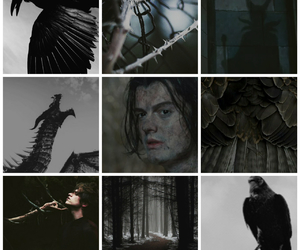 black, crow, and maleficent image