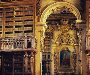 architecture, library, and portugal image