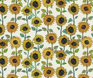 flower, pattern, and sunflower image