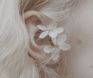 flowers, white, and blonde image