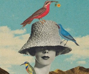 bird, Collage, and art image