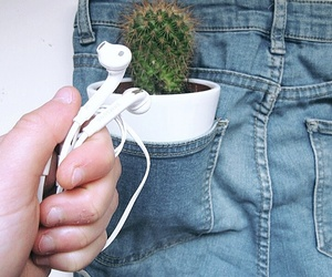 cactus, jeans, and music image