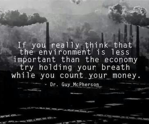 money, environment, and quotes image