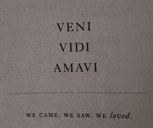 quotes, words, and amavi image