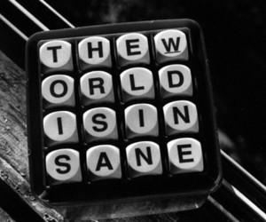 world, insane, and black and white image