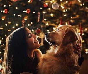 christmas, girl, and pet image