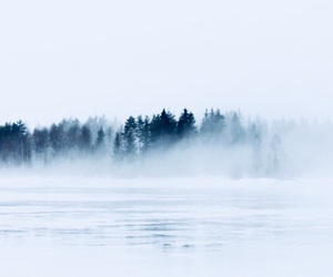 blue, cool, and fog image