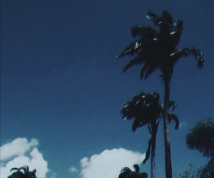 beach, blue, and brasil image
