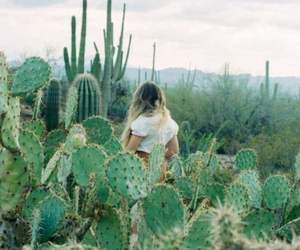 blonde, cactus, and green image
