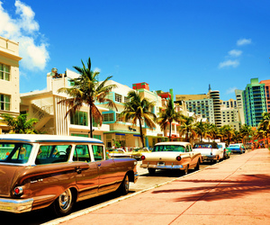 beach, cars, and tropical image