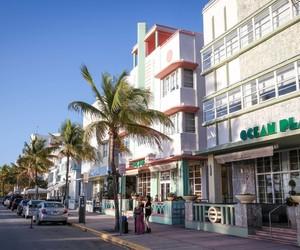 florida, Miami, and south florida image