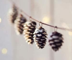 cone, decor, and winter image