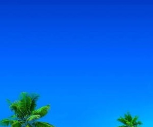 beach, beautiful, and tropical image