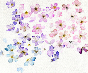 art, flowers, and pretty image