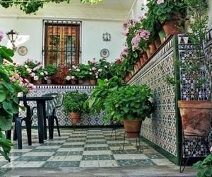california, casa, and geraniums image
