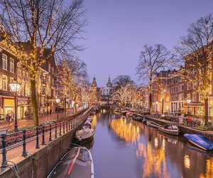 aesthetic, lights, and netherlands image