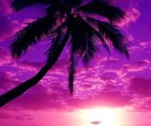 purple, beach, and sunset image
