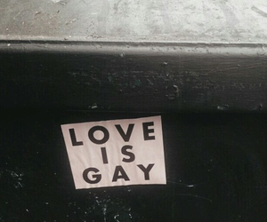 love, gay, and pink image