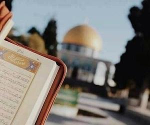 palestine, قرآن, and quran image