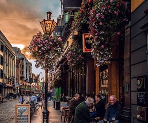 dublin, flowers, and ireland image