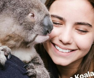 Koala and violetta komyshan image