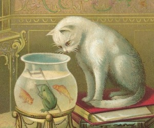art, book, and cat image