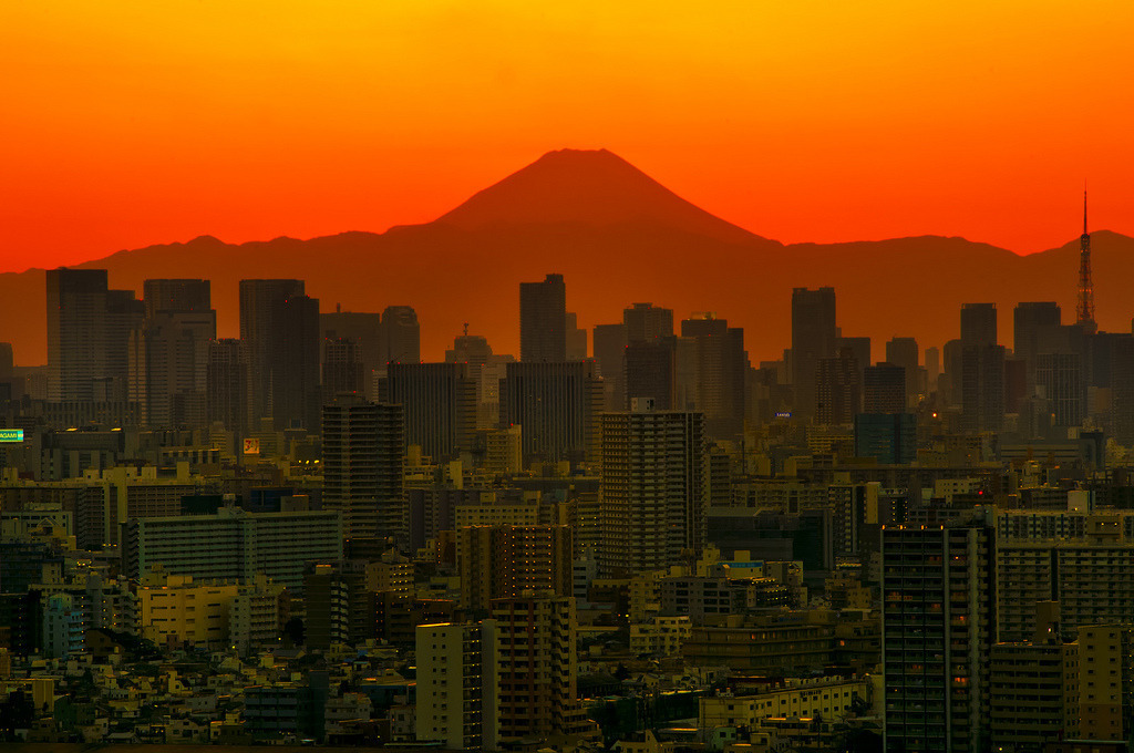buildings, city, and sunrise image