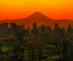 buildings, city, and sunset image