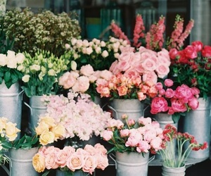 carefree, flowers, and garden image