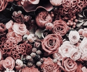 florist, flowers, and roses image