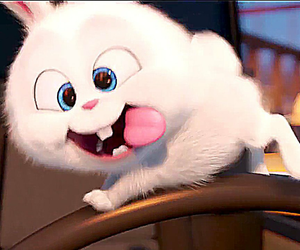 bunny, movie, and cute image