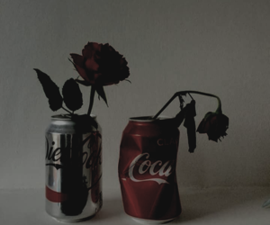 aesthetic, coca-cola, and grunge image