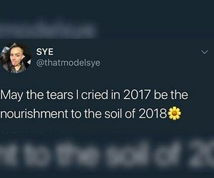 cry, new, and quote image