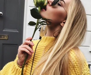 aesthetic, hipster, and rose image