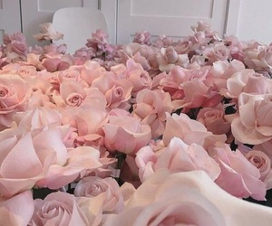 floral, pink, and love image