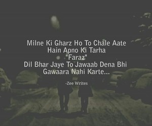 hindi and urdu image
