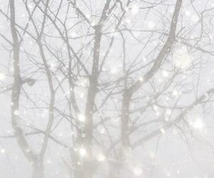 header, tree, and winter image
