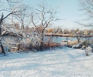beaty, ice, and nature image