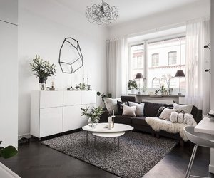 interior and living room image