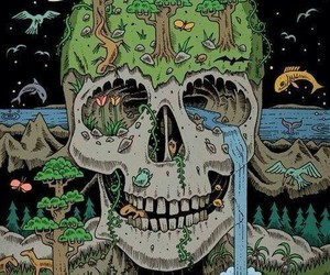 art, skull, and nature image