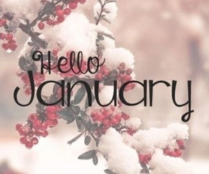 january and snow image