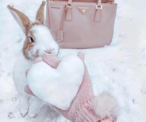 bunny, pink, and fashion image